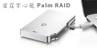 palm-raid-review
